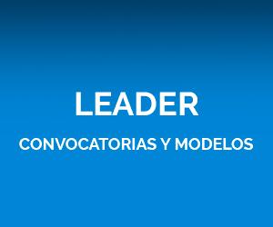 Leader Convocatorias y modelos